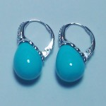 La Preciosa Turquoise Shell Earring